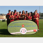 Pop Out Banner [Essex Cricket]